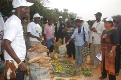 President Sirleaf inspects produce at Fair in Tubmanburg